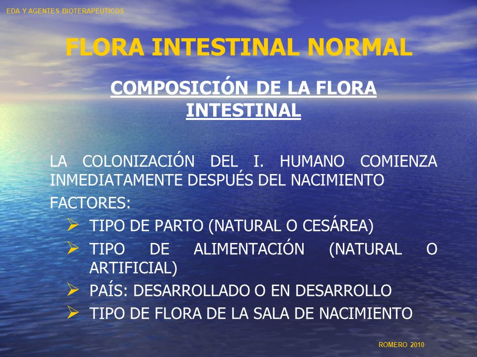 FLORA INTESTINAL NORMAL
