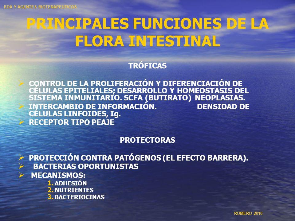 PRINCIPALES FUNCIONES DE LA FLORA INTESTINAL