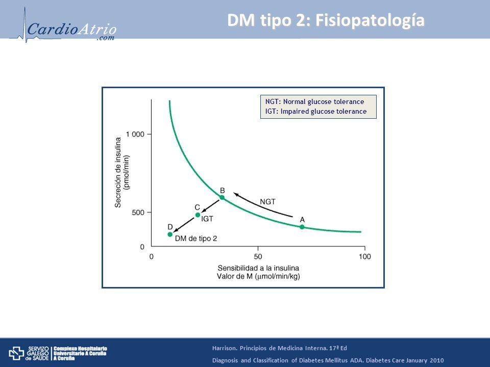DM tipo 2: Fisiopatología