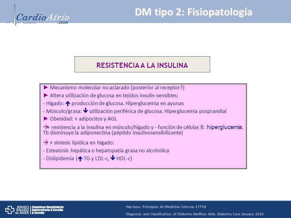 DM tipo 2: Fisiopatología RESISTENCIA A LA INSULINA