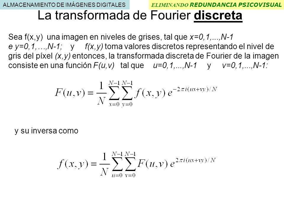 La transformada de Fourier discreta