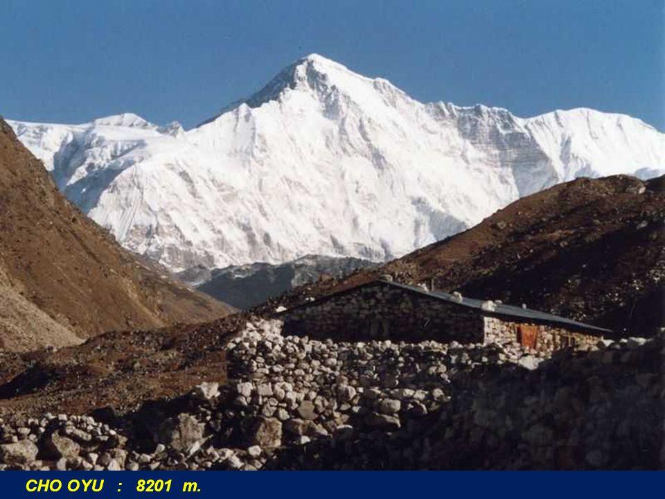 CHO OYU : 8201 m.