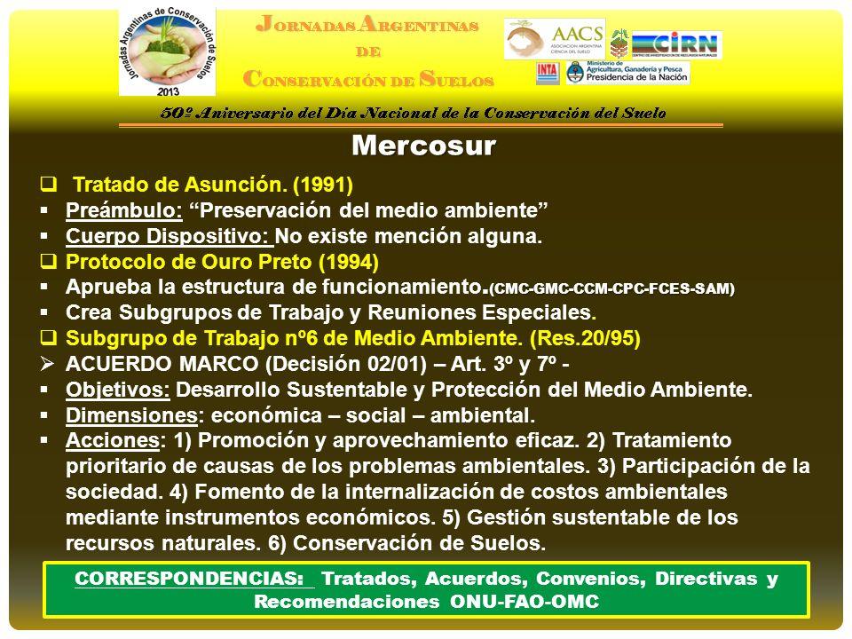 Mercosur Tratado de Asunción. (1991)