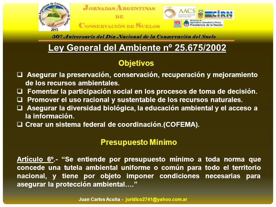 Ley General del Ambiente nº 25.675/2002