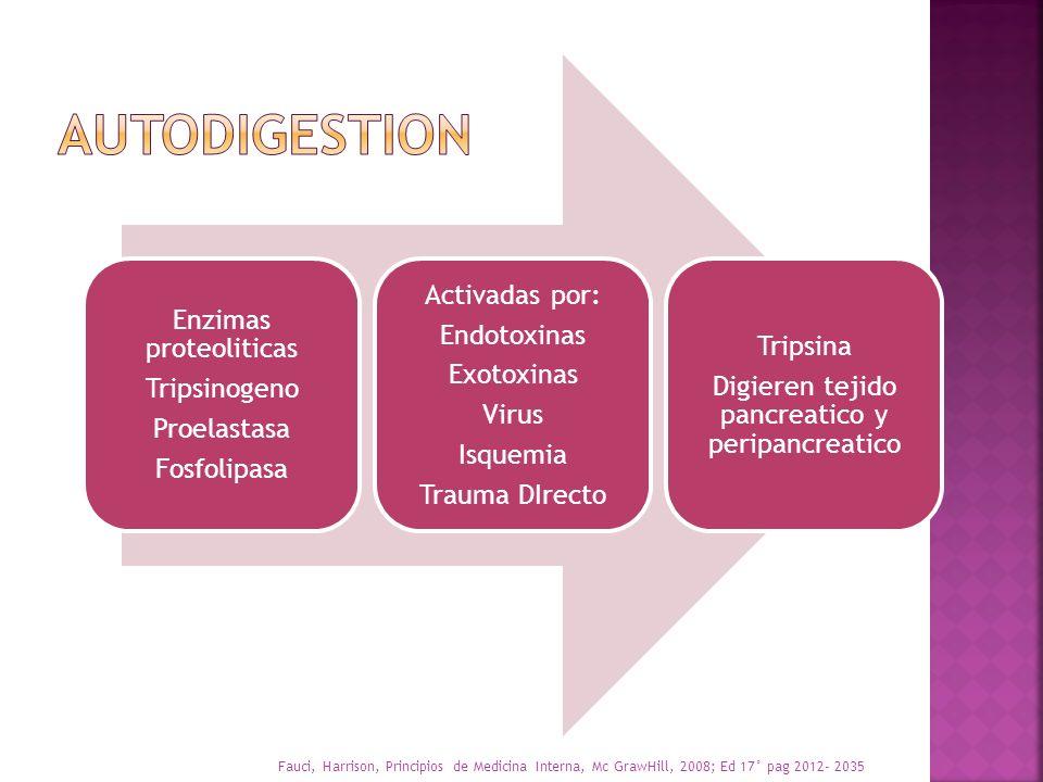 AUTODIGESTION Activadas por: Enzimas proteoliticas Endotoxinas