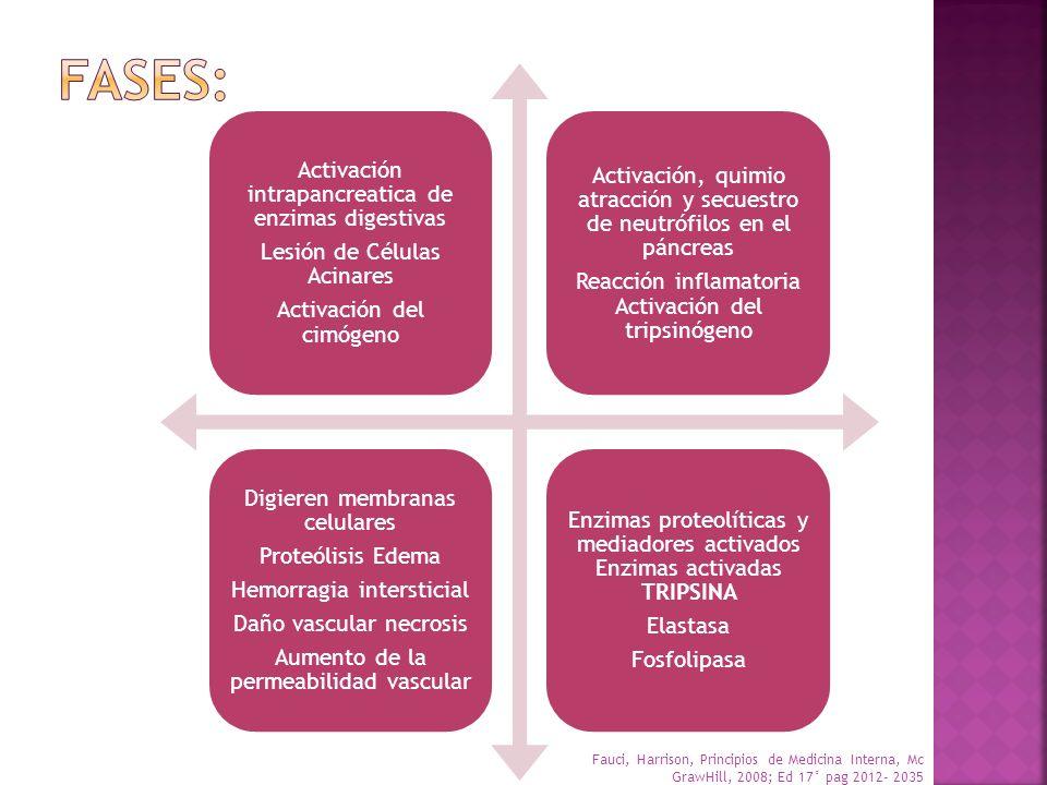 FASES: Activación intrapancreatica de enzimas digestivas