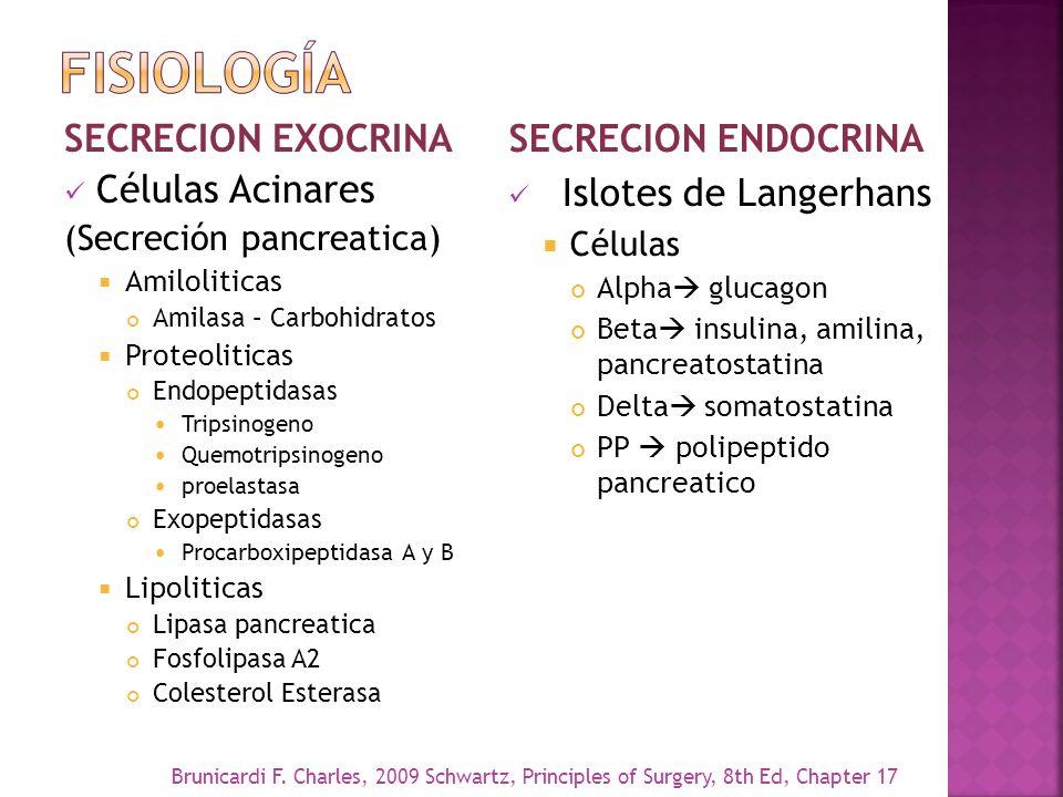 fisiología SECRECION ENDOCRINA SECRECION EXOCRINA Células Acinares