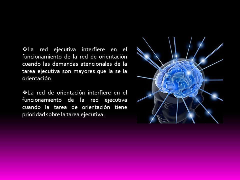 La red ejecutiva interfiere en el funcionamiento de la red de orientación cuando las demandas atencionales de la tarea ejecutiva son mayores que la se la orientación.