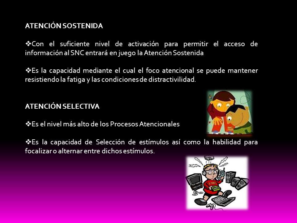 ATENCIÓN SOSTENIDA Con el suficiente nivel de activación para permitir el acceso de información al SNC entrará en juego la Atención Sostenida.