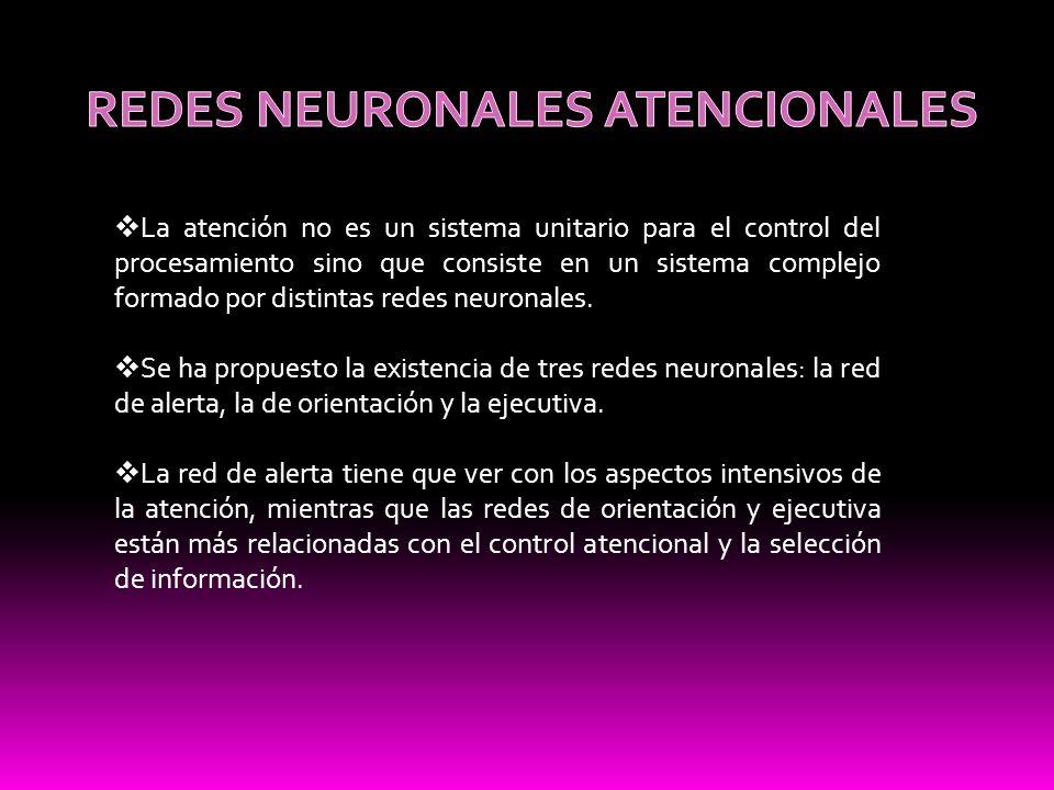 REDES NEURONALES ATENCIONALES