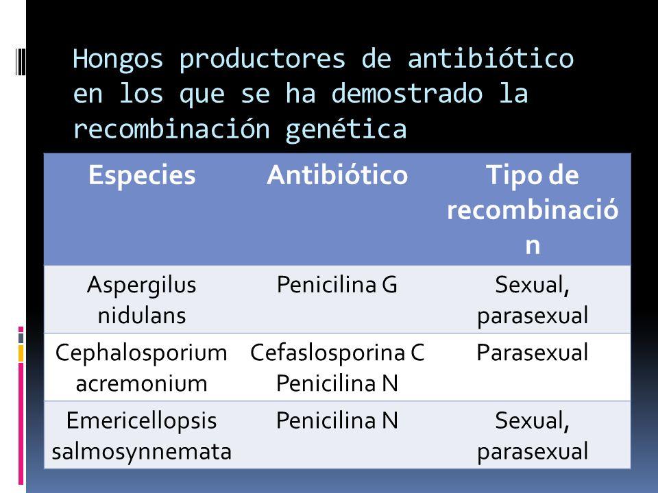 Especies Antibiótico Tipo de recombinación