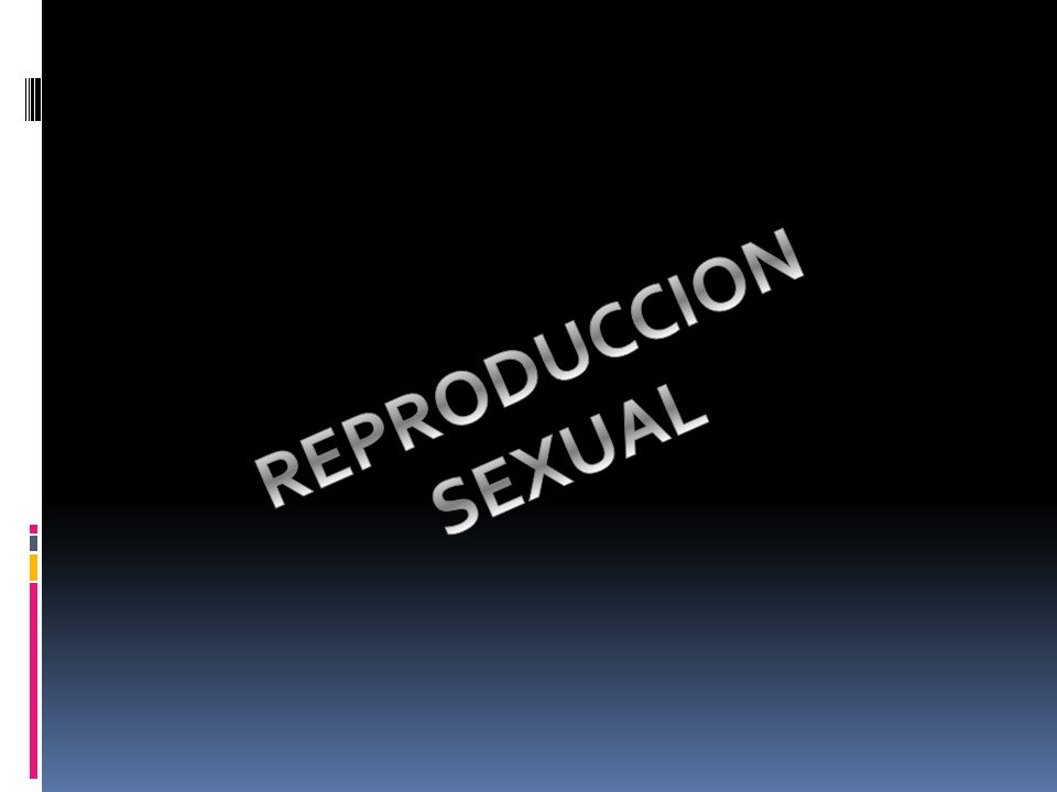 REPRODUCCION SEXUAL