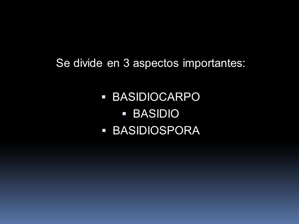 Se divide en 3 aspectos importantes: