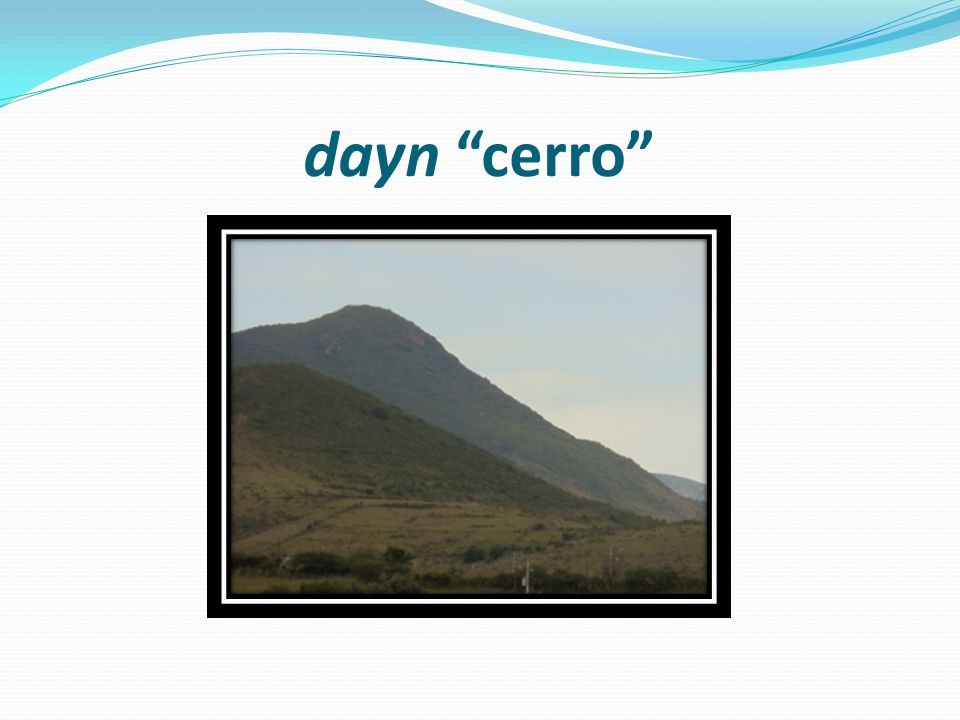 dayn cerro