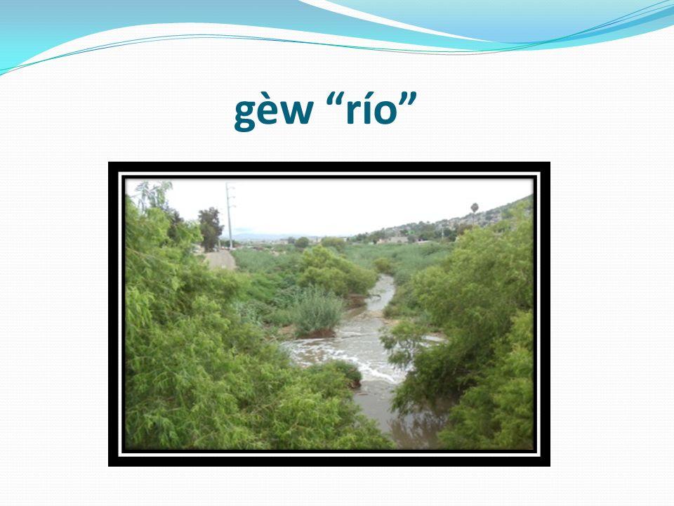gèw río