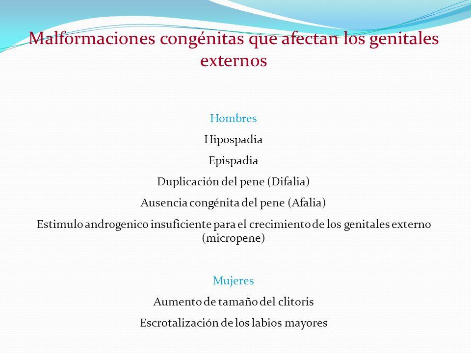 Malformaciones congénitas que afectan los genitales externos