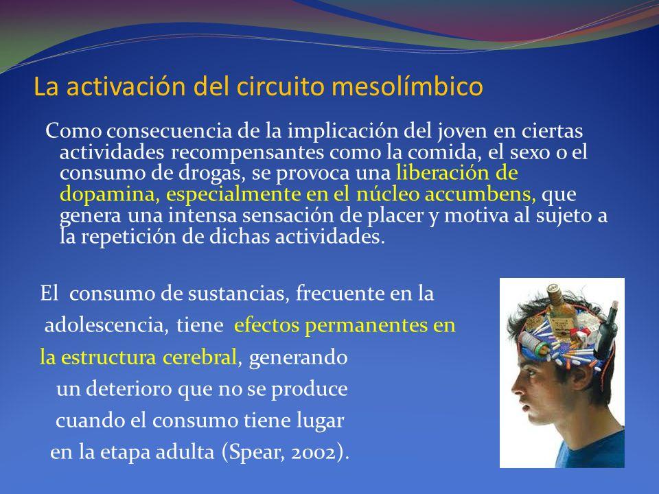La activación del circuito mesolímbico