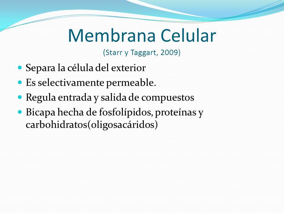 Membrana Celular (Starr y Taggart, 2009)