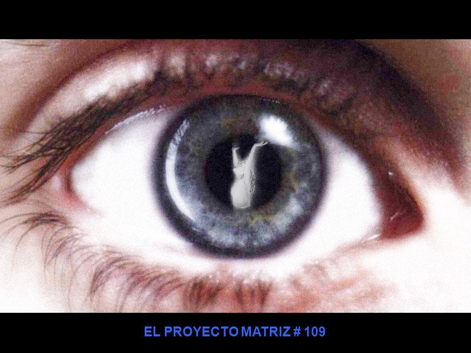 EL PROYECTO MATRIZ # 109