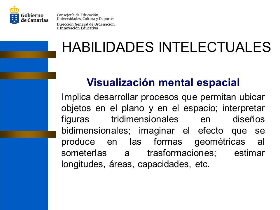Visualización mental espacial