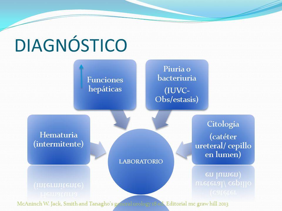 DIAGNÓSTICO Piuria o bacteriuria Funciones hepáticas