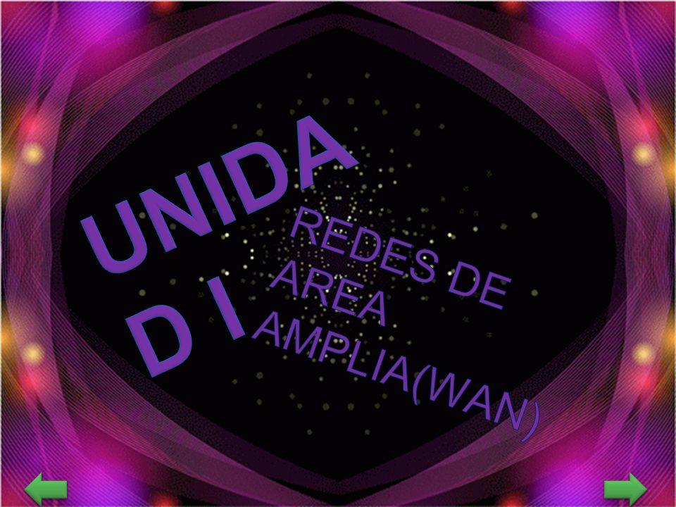REDES DE AREA AMPLIA(WAN)