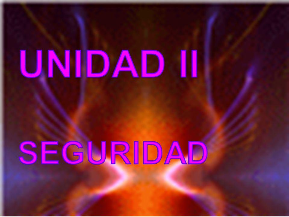 UNIDAD II SEGURIDAD