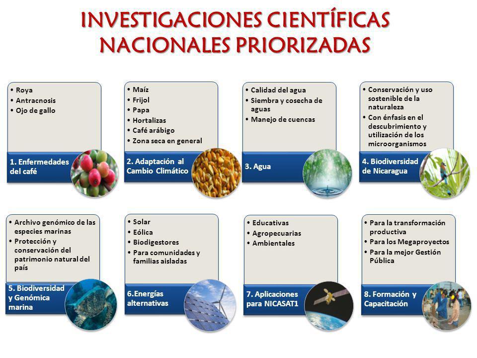 INVESTIGACIONES CIENTÍFICAS NACIONALES PRIORIZADAS