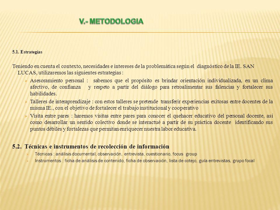 V.- METODOLOGIA5.1. Estrategias.