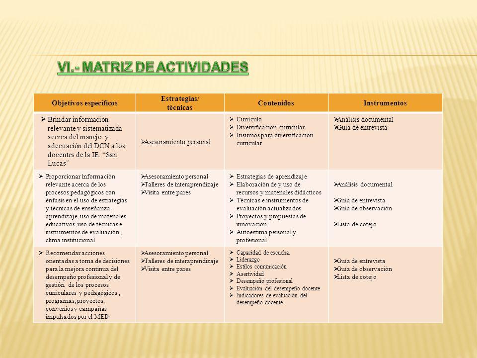 VI.- MATRIZ DE ACTIVIDADES Objetivos específicos