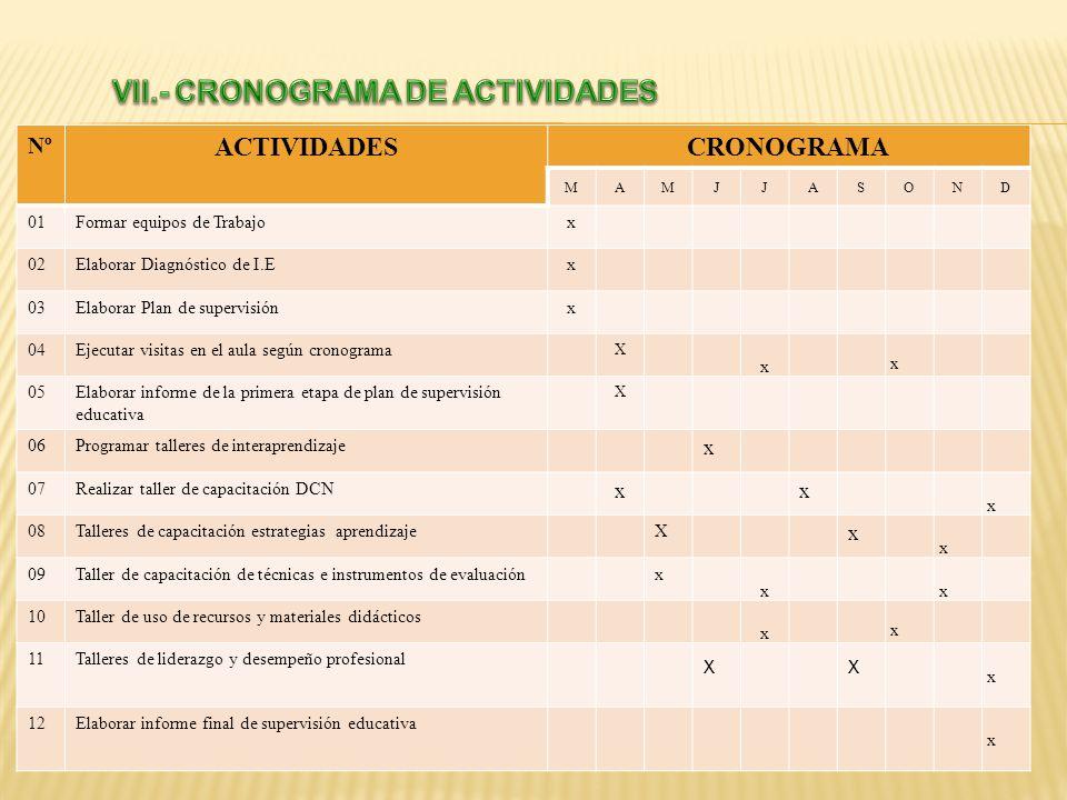 VII.- CRONOGRAMA DE ACTIVIDADES