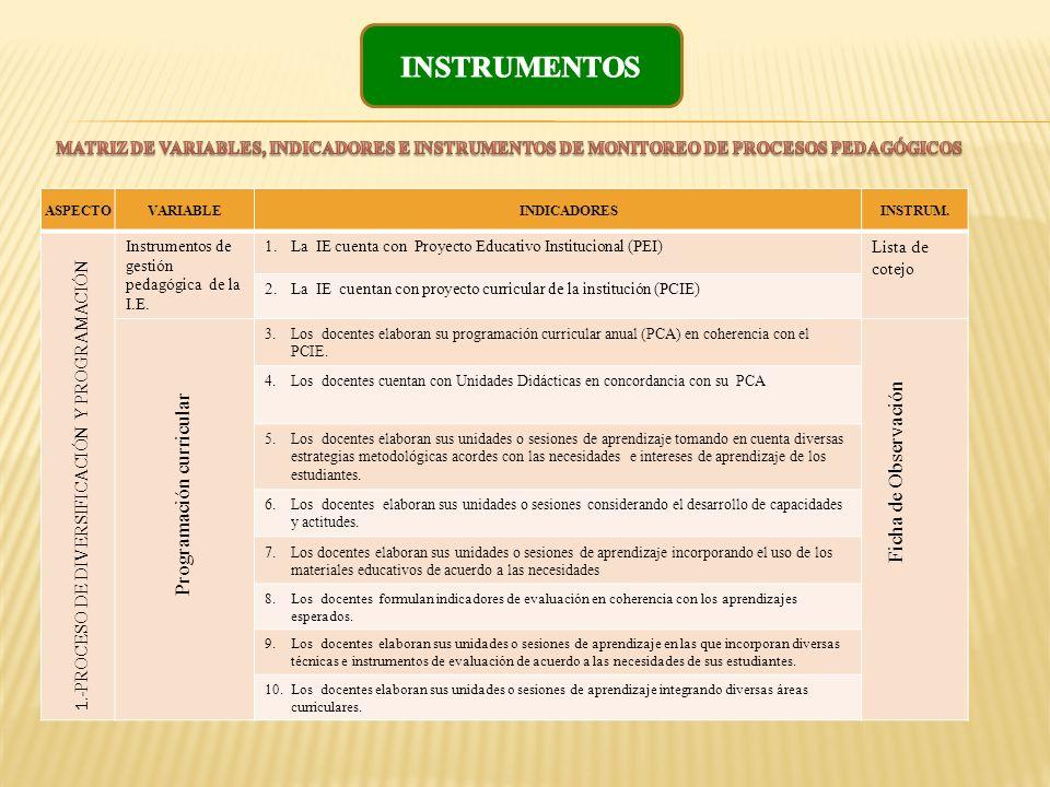 INSTRUMENTOS Ficha de Observación Programación curricular
