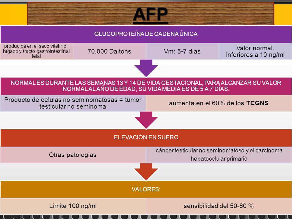 AFP 70.000 Daltons Vm: 5-7 dias Valor normal. inferiores a 10 ng/ml