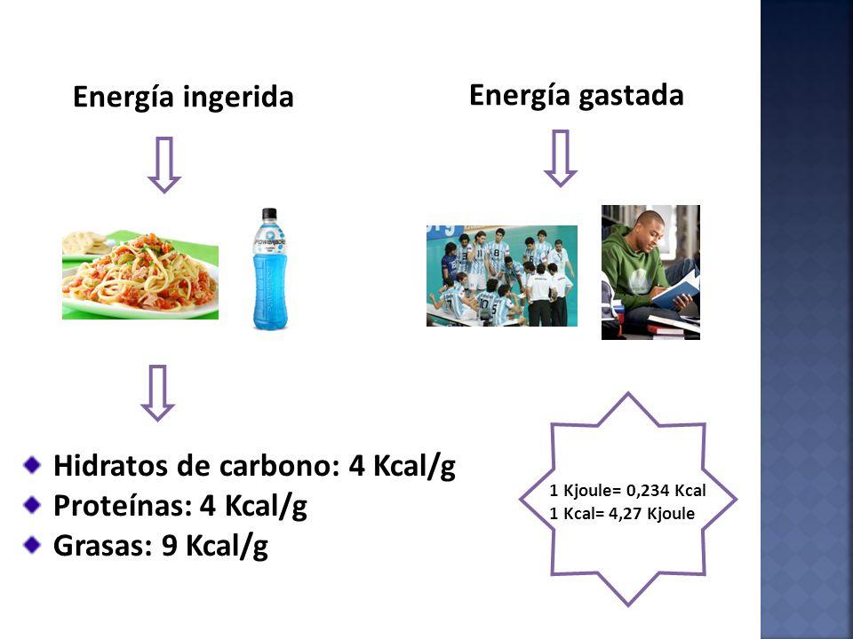 Hidratos de carbono: 4 Kcal/g Proteínas: 4 Kcal/g Grasas: 9 Kcal/g
