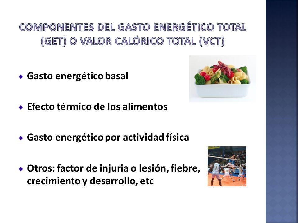 Componentes del gasto energético total (GET) o Valor calórico total (Vct)