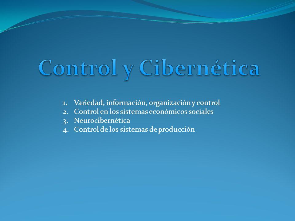 Control y Cibernética Variedad, información, organización y control