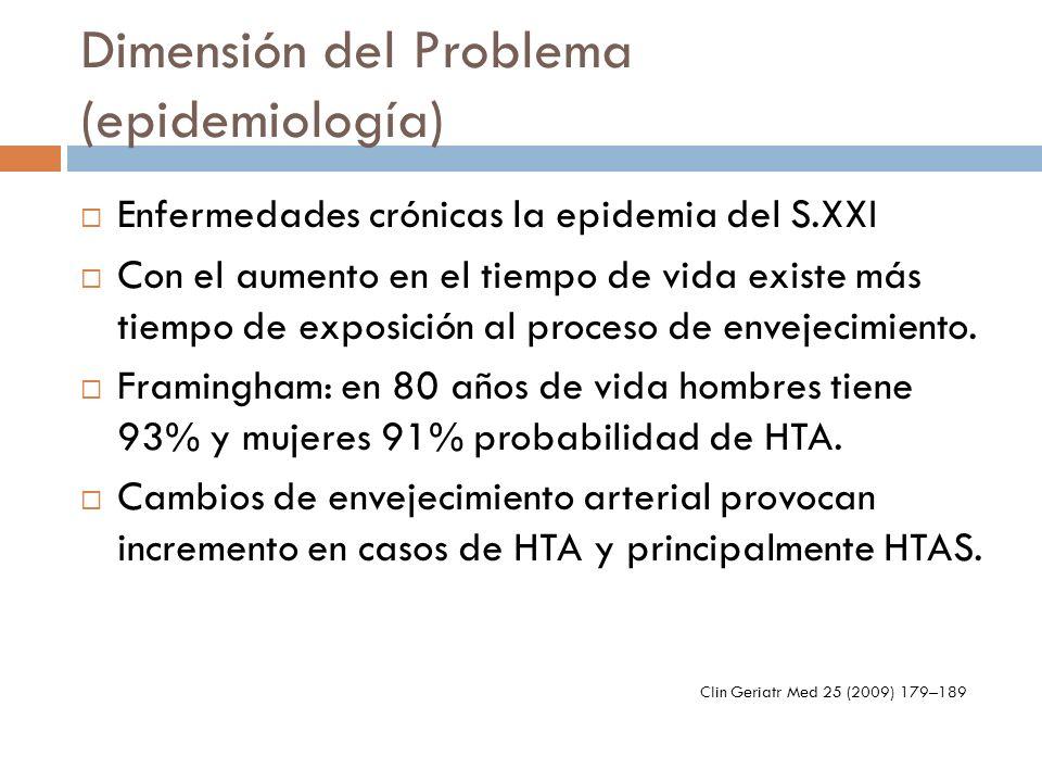 Dimensión del Problema (epidemiología)