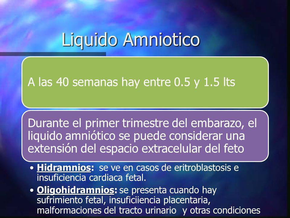 Liquido Amniotico A las 40 semanas hay entre 0.5 y 1.5 lts