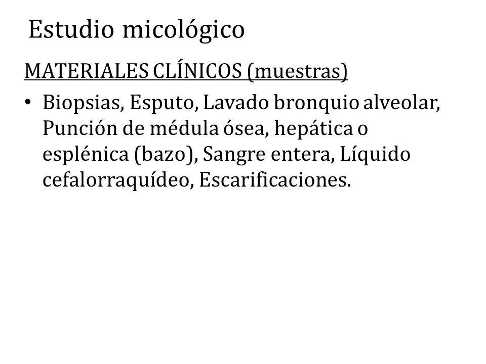 Estudio micológico MATERIALES CLÍNICOS (muestras)