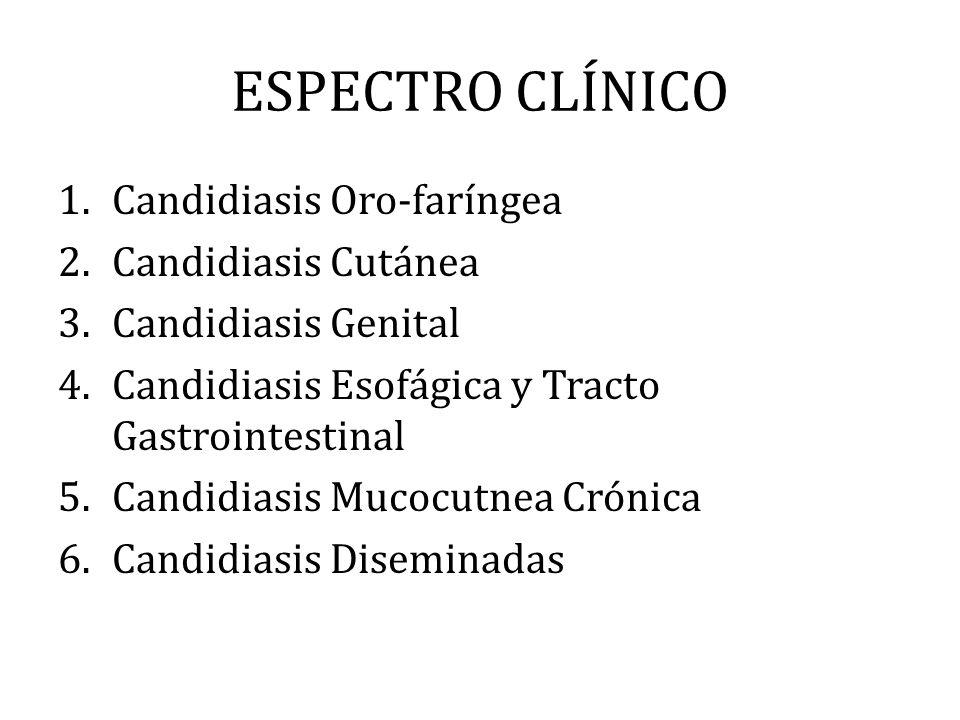 ESPECTRO CLÍNICO Candidiasis Oro-faríngea Candidiasis Cutánea