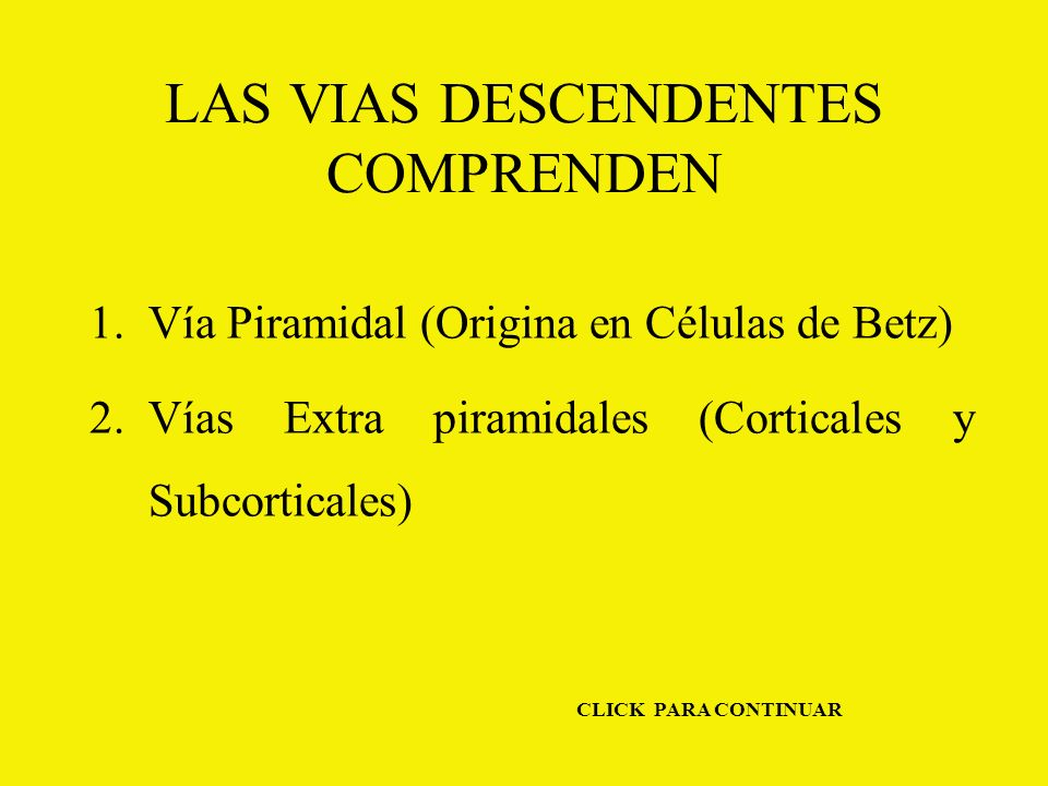 LAS VIAS DESCENDENTES COMPRENDEN