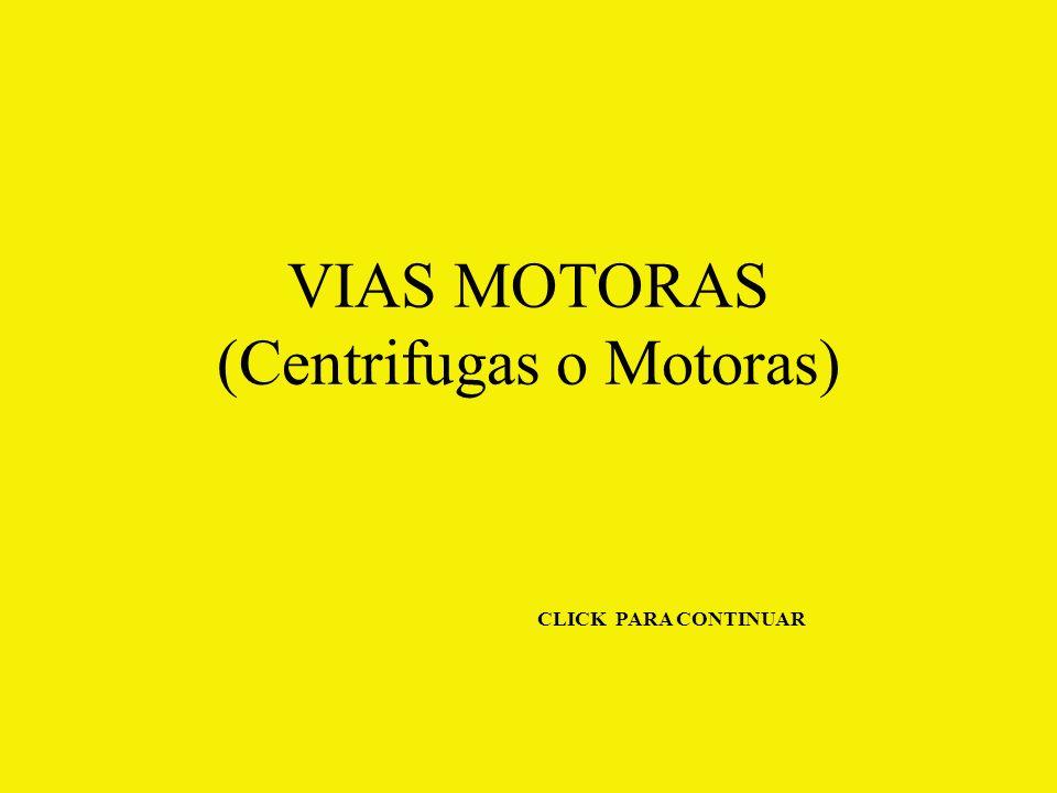 VIAS MOTORAS (Centrifugas o Motoras)