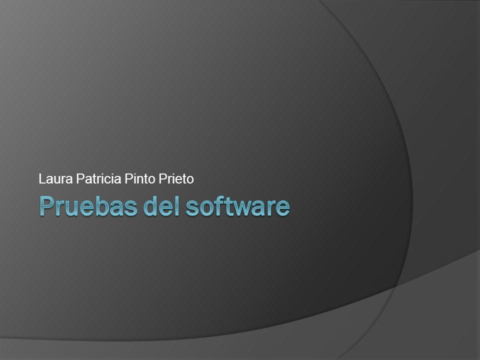 Laura Patricia Pinto Prieto