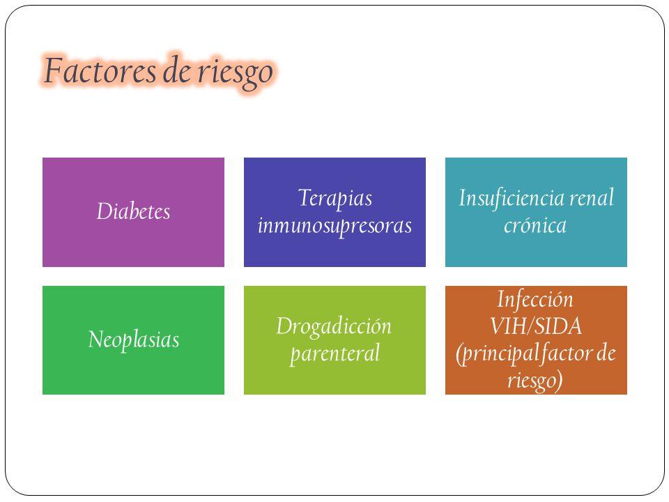 Factores de riesgo Diabetes Terapias inmunosupresoras