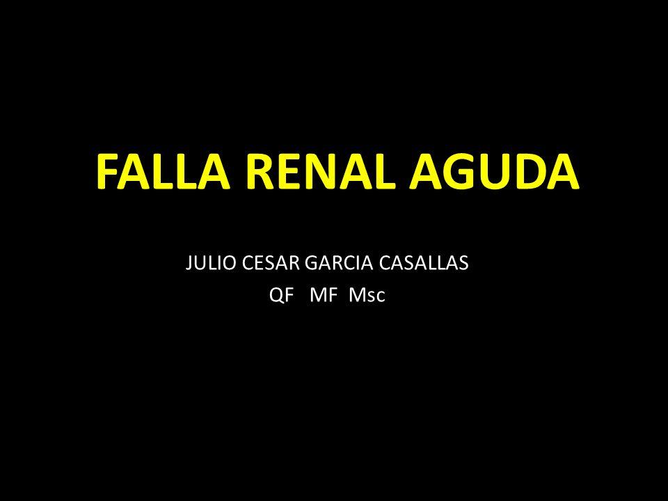 JULIO CESAR GARCIA CASALLAS QF MF Msc