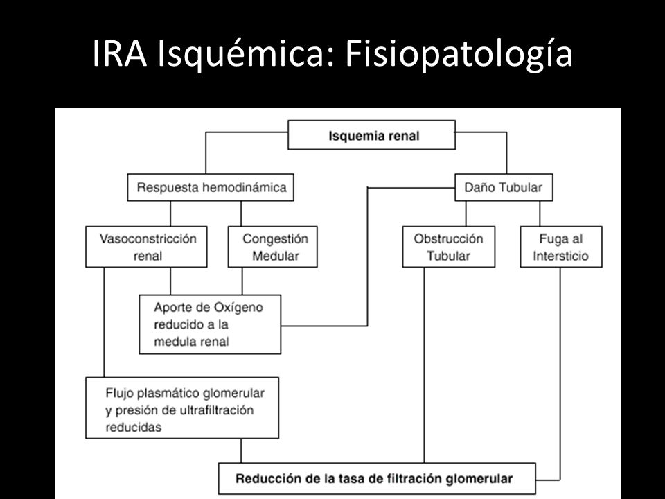 IRA Isquémica: Fisiopatología