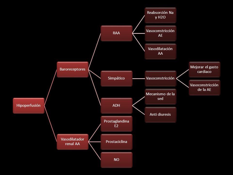 Mejorar el gasto cardiaco Vasoconstricción de la AE ADH
