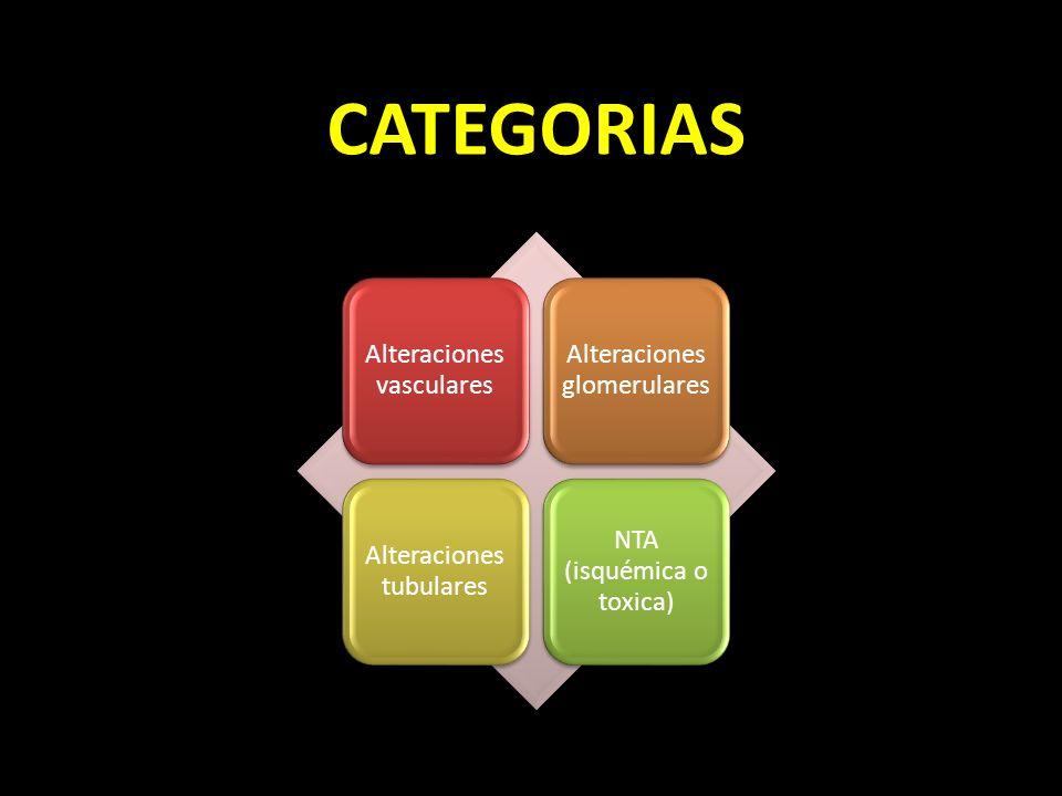 CATEGORIAS Alteraciones vasculares Alteraciones glomerulares