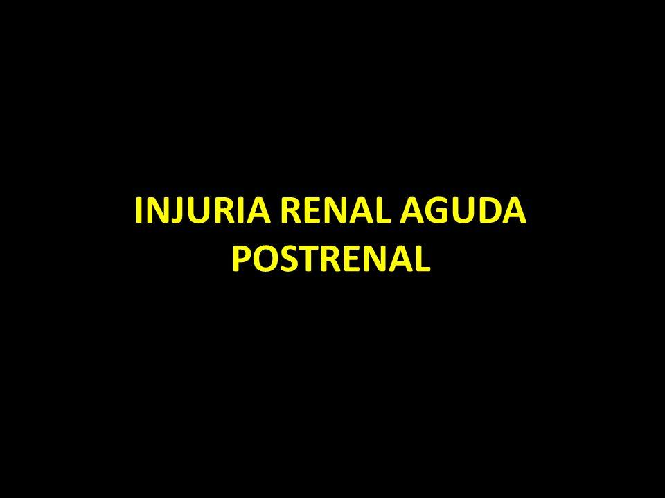 INJURIA RENAL AGUDA POSTRENAL