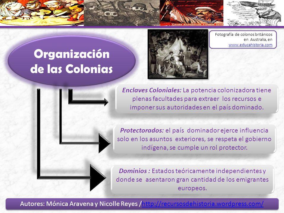 Organización de las Colonias